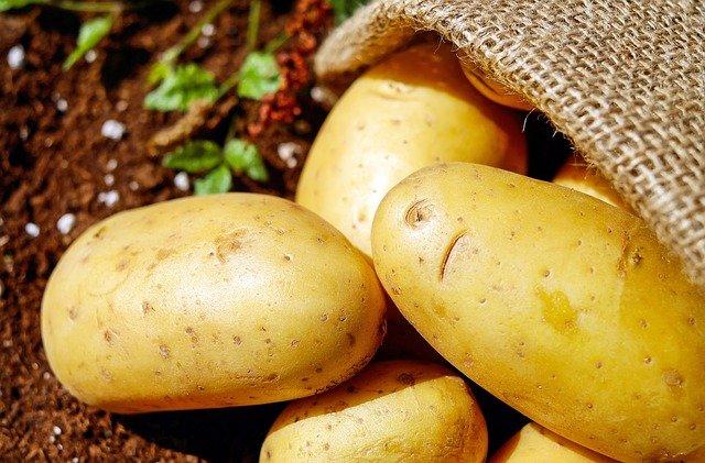 brambory v pytli