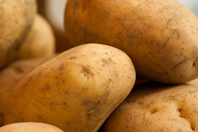 čerstvé brambory