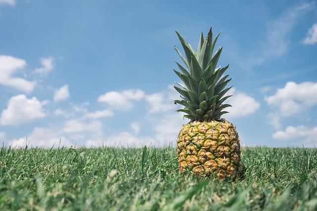 ananas v trávě