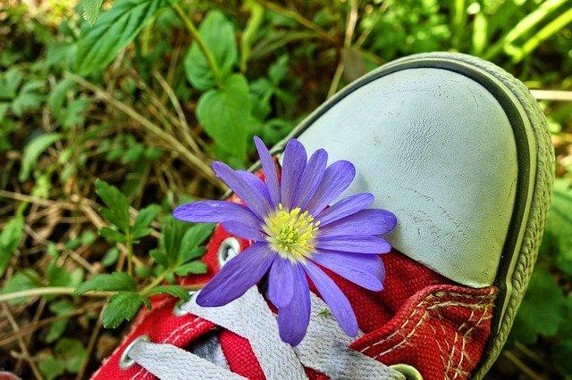květ na botě.jpg